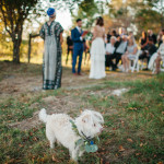 Puppy Love Wedding.