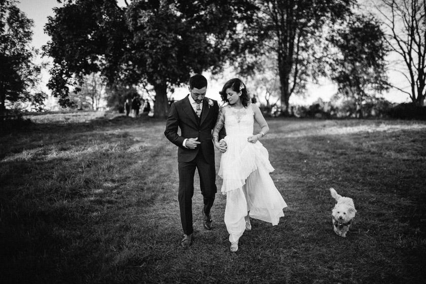 Puppy Love Wedding.